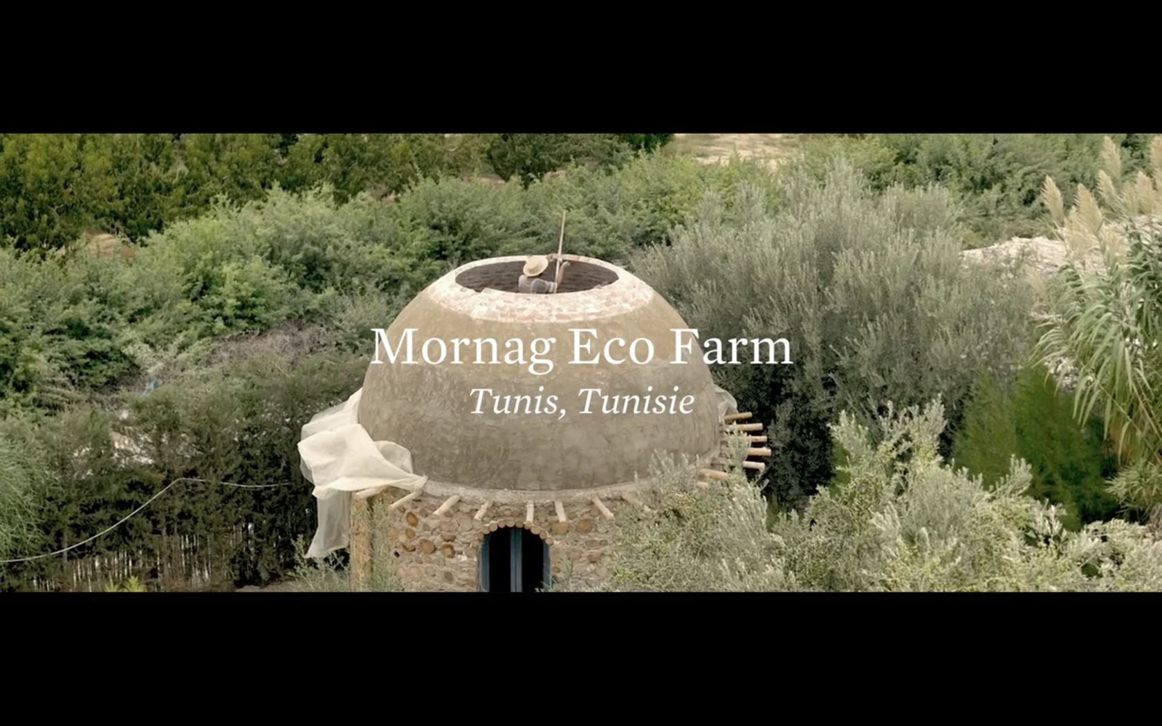 TheCreativeNet Eco Farm